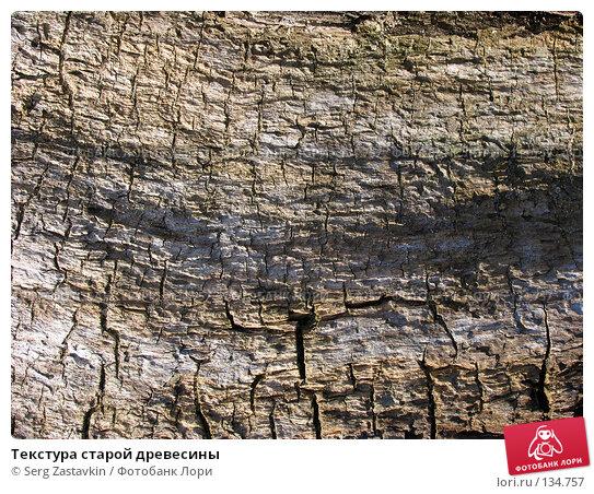 Текстура старой древесины, фото № 134757, снято 2 октября 2005 г. (c) Serg Zastavkin / Фотобанк Лори