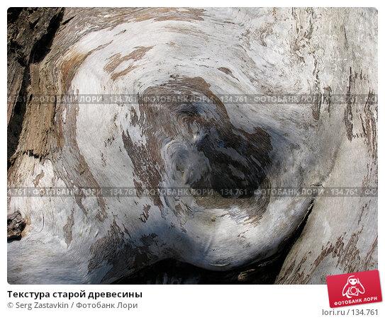 Текстура старой древесины, фото № 134761, снято 2 октября 2005 г. (c) Serg Zastavkin / Фотобанк Лори