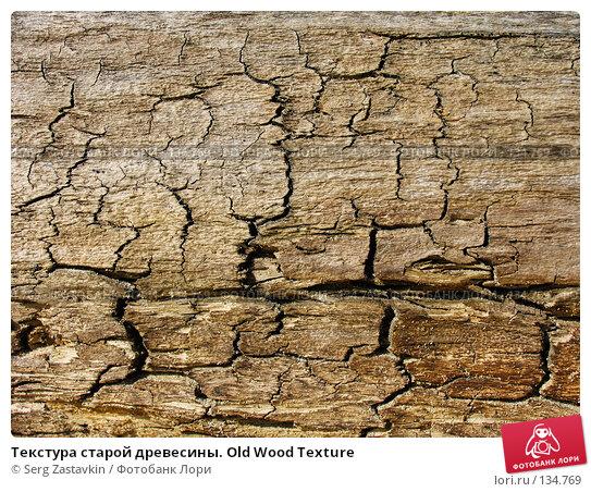 Текстура старой древесины. Old Wood Texture, фото № 134769, снято 2 октября 2005 г. (c) Serg Zastavkin / Фотобанк Лори