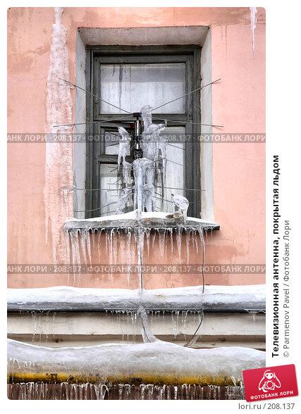 Телевизионная антенна, покрытая льдом, фото № 208137, снято 19 февраля 2008 г. (c) Parmenov Pavel / Фотобанк Лори