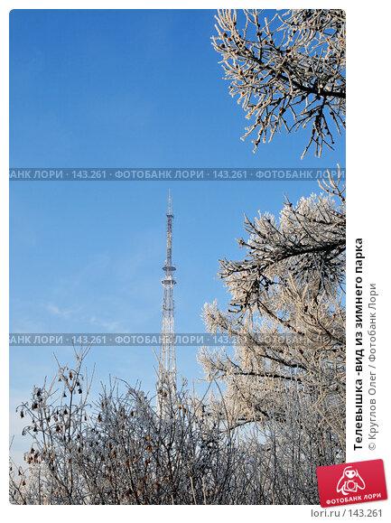 Телевышка -вид из зимнего парка, фото № 143261, снято 5 декабря 2007 г. (c) Круглов Олег / Фотобанк Лори