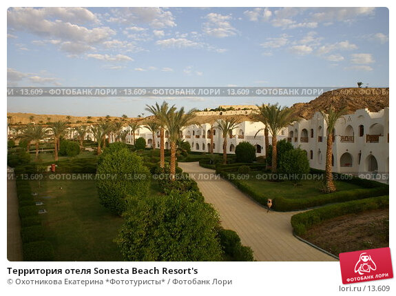 Купить «Территория отеля Sonesta Beach Resort's», фото № 13609, снято 19 октября 2006 г. (c) Охотникова Екатерина *Фототуристы* / Фотобанк Лори