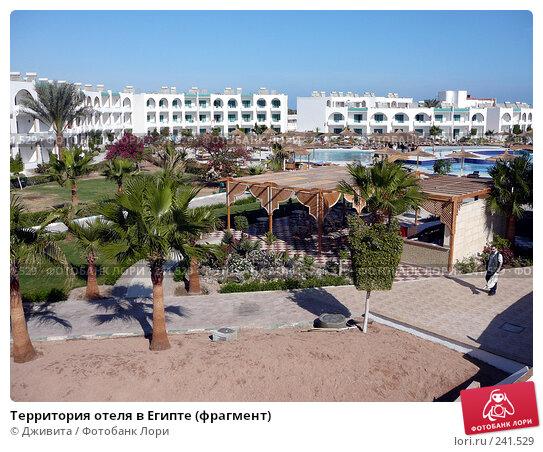Территория отеля в Египте (фрагмент), фото № 241529, снято 6 января 2008 г. (c) Дживита / Фотобанк Лори