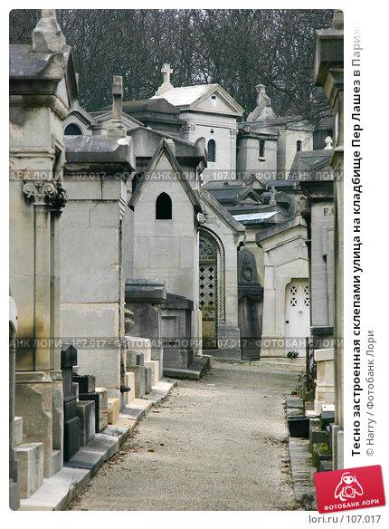 Купить «Тесно застроенная склепами улица на кладбище Пер Лашез в Париже», фото № 107017, снято 26 февраля 2006 г. (c) Harry / Фотобанк Лори