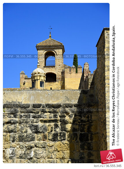 The Alcazar de los Reyes Christianos in Cordoba Andalusia,Spain. Стоковое фото, фотограф Frederic Soreau / age Fotostock / Фотобанк Лори