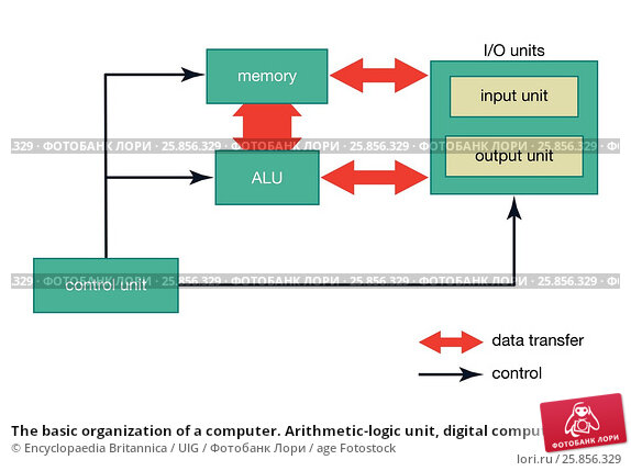 an analysis of the micro architecture and control unit of the computers alu University of bahrain the internal components of a processor including data path and control unit, the arithmetic logic unit bus micro architecture.