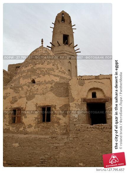 Купить «the city of el qazr in the sahara desert in egypt», фото № 27795657, снято 16 октября 2018 г. (c) PantherMedia / Фотобанк Лори