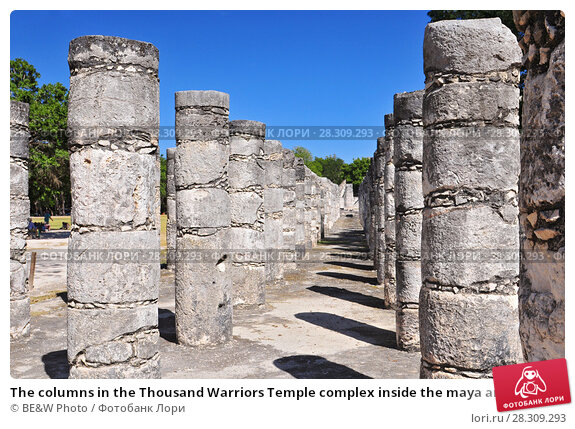 Купить «The columns in the Thousand Warriors Temple complex inside the maya archeological site of Chichen Itza, Mexico», фото № 28309293, снято 27 апреля 2018 г. (c) BE&W Photo / Фотобанк Лори