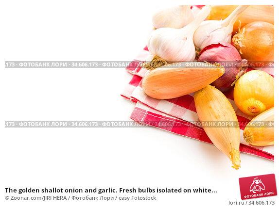 The golden shallot onion and garlic. Fresh bulbs isolated on white... Стоковое фото, фотограф Zoonar.com/JIRI HERA / easy Fotostock / Фотобанк Лори