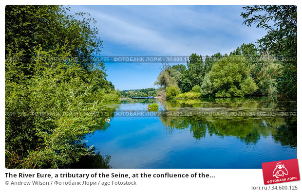 The River Eure, a tributary of the Seine, at the confluence of the... Стоковое фото, фотограф Andrew Wilson / age Fotostock / Фотобанк Лори