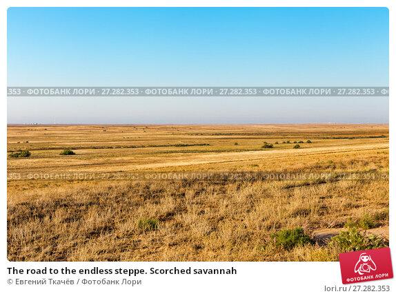Купить «The road to the endless steppe. Scorched savannah», фото № 27282353, снято 29 сентября 2015 г. (c) Евгений Ткачёв / Фотобанк Лори