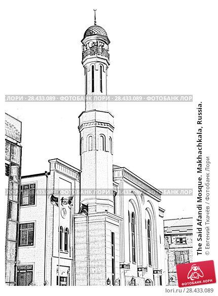 Купить «The Said Afandi Mosque. Makhachkala, Russia.», иллюстрация № 28433089 (c) Евгений Ткачёв / Фотобанк Лори
