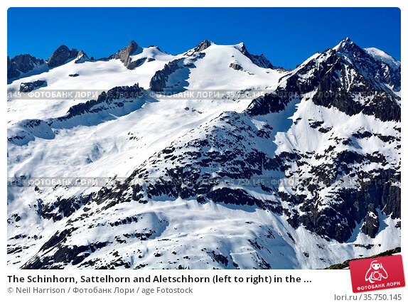 The Schinhorn, Sattelhorn and Aletschhorn (left to right) in the ... Стоковое фото, фотограф Neil Harrison / age Fotostock / Фотобанк Лори