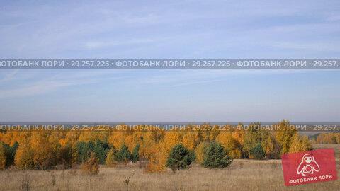 Купить «The Vast Expanses Of Russia. Golden Autumn. Yellow-red forest on a background of blue sky with small cirrus clouds.», видеоролик № 29257225, снято 26 февраля 2020 г. (c) Константин Мерцалов / Фотобанк Лори