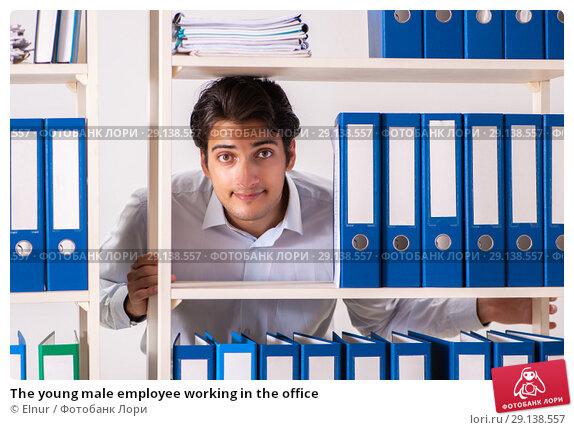 Купить «The young male employee working in the office», фото № 29138557, снято 7 июля 2018 г. (c) Elnur / Фотобанк Лори