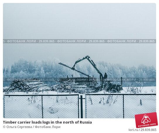 Купить «Timber carrier loads logs in the north of Russia», фото № 29839865, снято 15 января 2018 г. (c) Ольга Сергеева / Фотобанк Лори