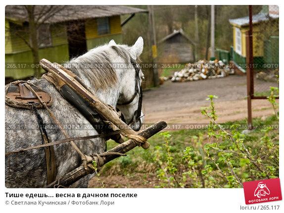 Тише едешь... весна в дачном поселке, фото № 265117, снято 29 марта 2017 г. (c) Светлана Кучинская / Фотобанк Лори