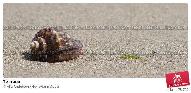 Купить «Тишина», фото № 75709, снято 26 апреля 2007 г. (c) Alla Andersen / Фотобанк Лори
