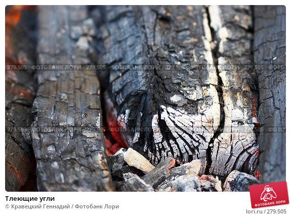 Тлеющие угли, фото № 279505, снято 26 апреля 2017 г. (c) Кравецкий Геннадий / Фотобанк Лори