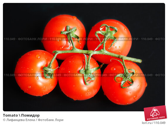Tomato \ Помидор, фото № 110049, снято 27 октября 2007 г. (c) Лифанцева Елена / Фотобанк Лори