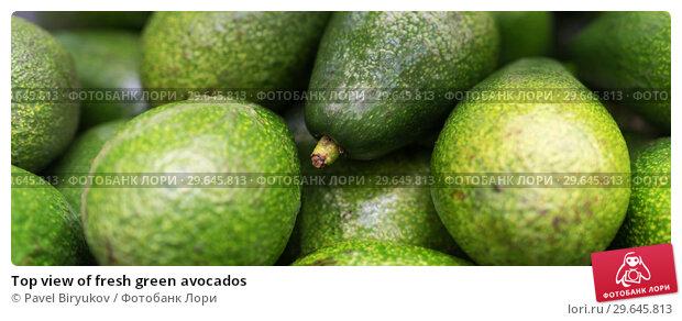 Купить «Top view of fresh green avocados», фото № 29645813, снято 21 октября 2018 г. (c) Pavel Biryukov / Фотобанк Лори