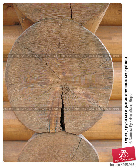 Торец сруба из оцилиндрованных брёвен, фото № 265965, снято 19 апреля 2008 г. (c) Заноза-Ру / Фотобанк Лори