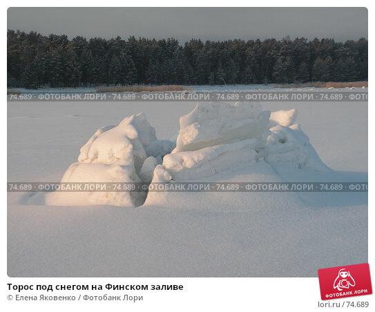 Купить «Торос под снегом на Финском заливе», фото № 74689, снято 22 июля 2005 г. (c) Елена Яковенко / Фотобанк Лори