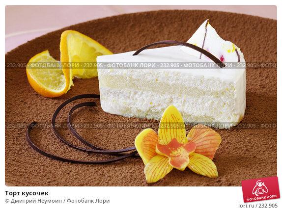 Купить «Торт кусочек», эксклюзивное фото № 232905, снято 28 июня 2006 г. (c) Дмитрий Неумоин / Фотобанк Лори