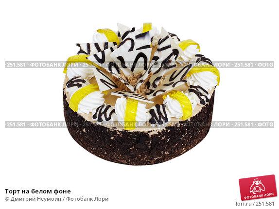 Торт на белом фоне, эксклюзивное фото № 251581, снято 24 декабря 2007 г. (c) Дмитрий Неумоин / Фотобанк Лори