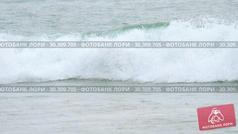 Купить «Tourists on Nai Harn beach», видеоролик № 30309705, снято 20 ноября 2018 г. (c) Игорь Жоров / Фотобанк Лори