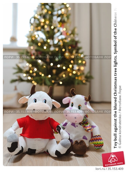 Toy bull against the blured Christmas tree lights. Symbol of the Chinese New year 2021. Merry Christmas and New year background. Стоковое фото, фотограф Galina kondratenko / Фотобанк Лори