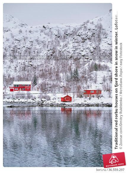 Traditional red rorbu houses on fjord shore in snow in winter. Lofoten... Стоковое фото, фотограф Zoonar.com/Dmitry Rukhlenko / easy Fotostock / Фотобанк Лори