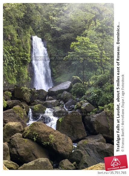 Trafalgar Falls at Laudat, about 5 miles east of Roseau. Dominica... Стоковое фото, фотограф Franco Banfi / age Fotostock / Фотобанк Лори