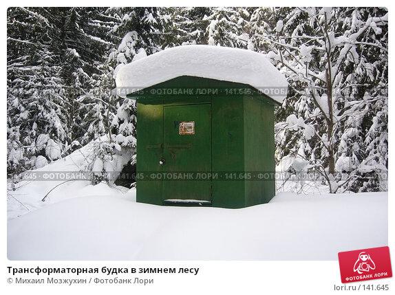 Трансформаторная будка в зимнем лесу, фото № 141645, снято 19 февраля 2006 г. (c) Михаил Мозжухин / Фотобанк Лори