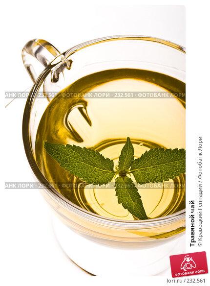 Купить «Травяной чай», фото № 232561, снято 22 июля 2005 г. (c) Кравецкий Геннадий / Фотобанк Лори