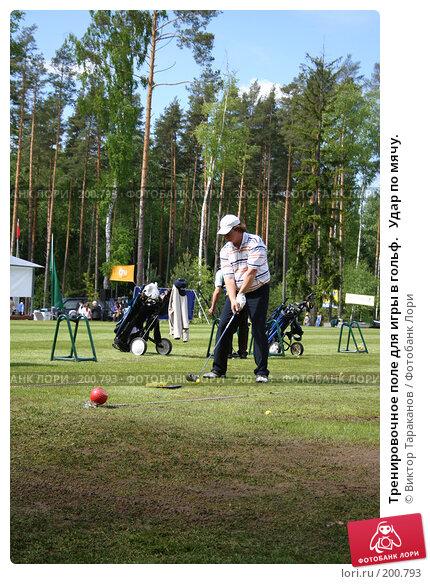 Тренировочное поле для игры в гольф.   Удар по мячу., эксклюзивное фото № 200793, снято 31 мая 2006 г. (c) Виктор Тараканов / Фотобанк Лори