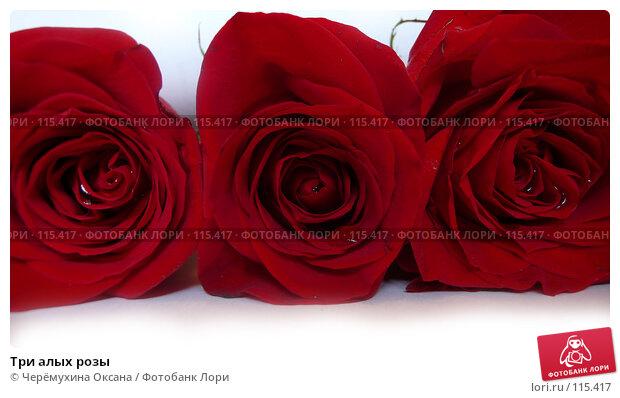 Три алых розы, фото № 115417, снято 19 июня 2007 г. (c) Черёмухина Оксана / Фотобанк Лори