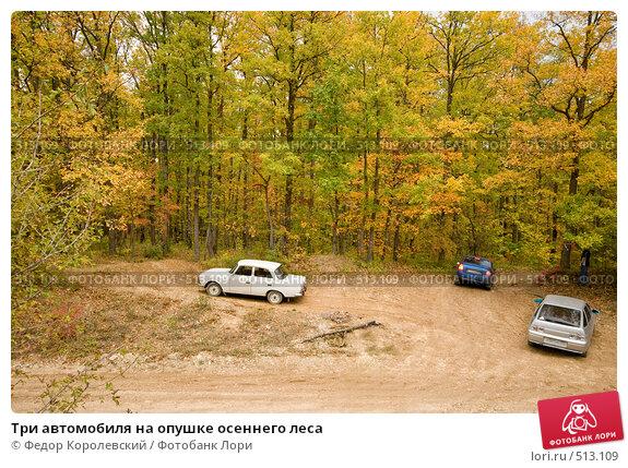 Купить «Три автомобиля на опушке осеннего леса», фото № 513109, снято 18 октября 2008 г. (c) Федор Королевский / Фотобанк Лори