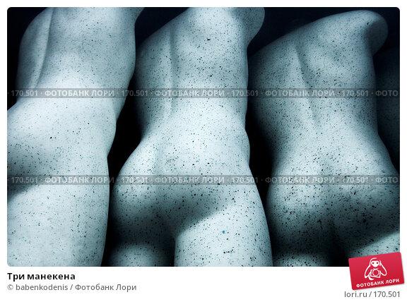 Купить «Три манекена», фото № 170501, снято 2 января 2007 г. (c) Бабенко Денис Юрьевич / Фотобанк Лори