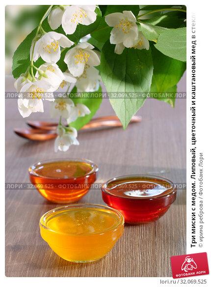 Три миски с медом. Липовый, цветочный и каштановый мед в стеклянных мисках под веткой жасмина. Стоковое фото, фотограф ирина реброва / Фотобанк Лори