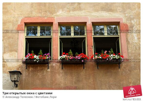 Купить «Три открытых окна с цветами», фото № 83033, снято 18 августа 2007 г. (c) Александр Телеснюк / Фотобанк Лори