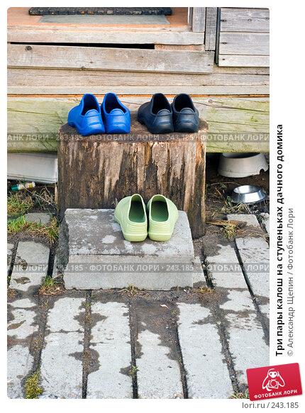 Три пары калош на ступеньках дачного домика, эксклюзивное фото № 243185, снято 4 апреля 2008 г. (c) Александр Щепин / Фотобанк Лори