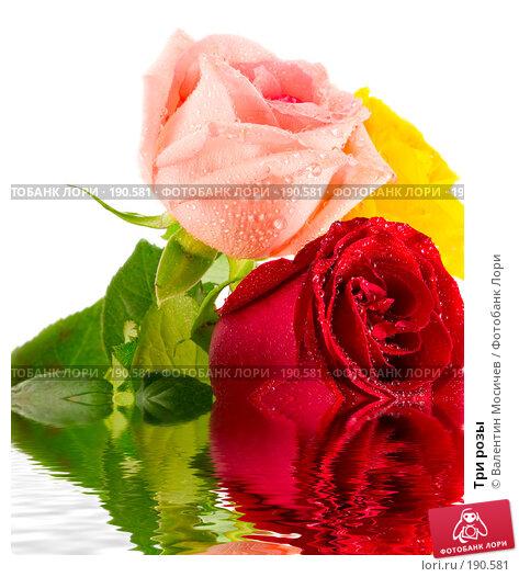 Три розы, фото № 190581, снято 16 февраля 2007 г. (c) Валентин Мосичев / Фотобанк Лори