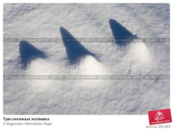 Три снежных холмика, фото № 251657, снято 19 февраля 2008 г. (c) Argument / Фотобанк Лори
