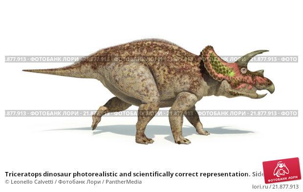 Купить «Triceratops dinosaur photorealistic and scientifically correct representation. Side view.», иллюстрация № 21877913 (c) PantherMedia / Фотобанк Лори