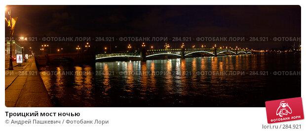 Троицкий мост ночью, фото № 284921, снято 26 октября 2016 г. (c) Андрей Пашкевич / Фотобанк Лори