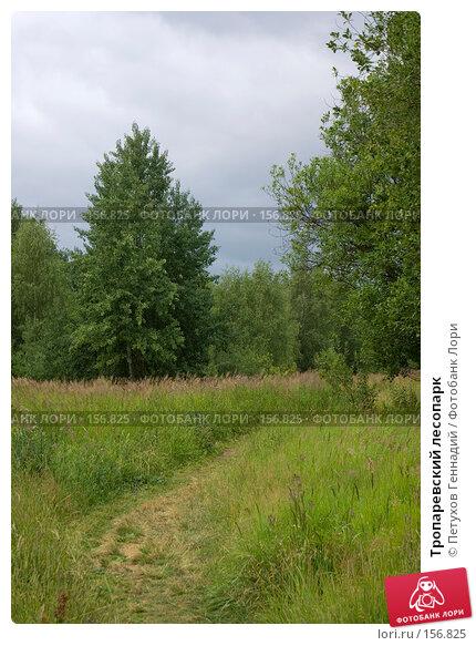 Тропаревский лесопарк, фото № 156825, снято 8 июля 2007 г. (c) Петухов Геннадий / Фотобанк Лори