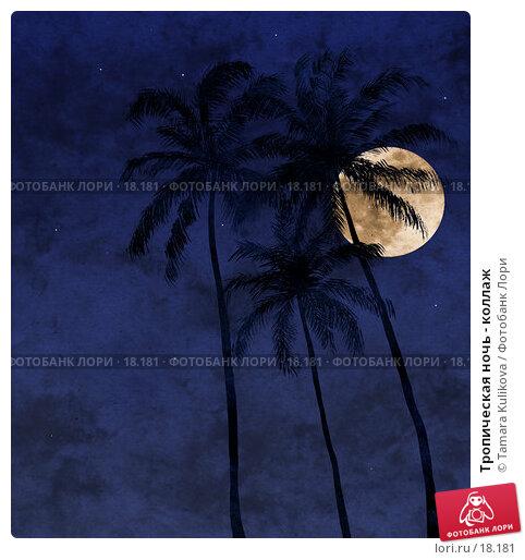 Тропическая ночь - коллаж, иллюстрация № 18181 (c) Tamara Kulikova / Фотобанк Лори