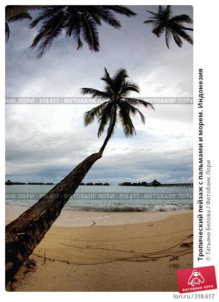 Тропический пейзаж с пальмами и морем. Индонезия, фото № 318617, снято 20 марта 2008 г. (c) Татьяна Белова / Фотобанк Лори