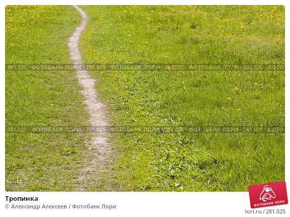 Тропинка, эксклюзивное фото № 281025, снято 11 мая 2008 г. (c) Александр Алексеев / Фотобанк Лори